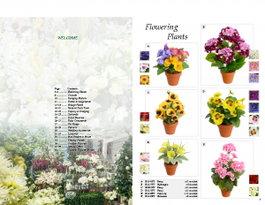 Artificial Flowers Brochure [Click to View]