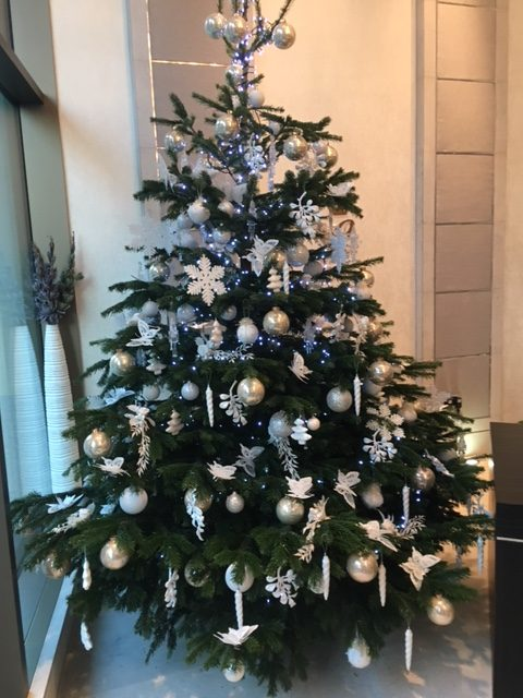Christmas Trees and Displays by Beechside Group